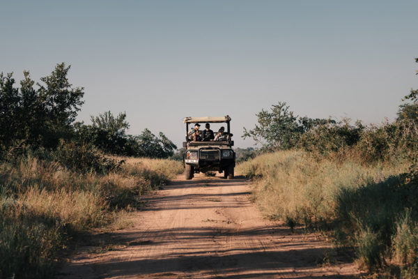 hoyo-hoyo-safarivehicle-timhulme
